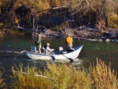 Urban Fly Fishing Missoula Montana