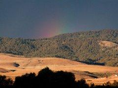 Rainbow - Montana